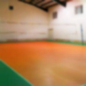 سالن والیبال شهدای گمنام ساری