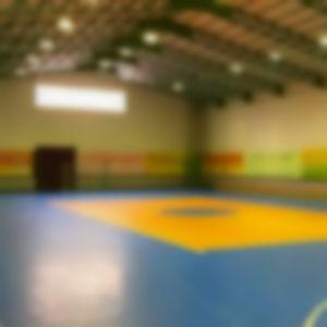 سالن ورزشی ثامن ساری