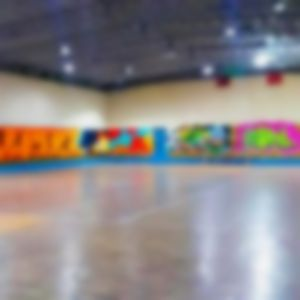 سالن ورزشی شاهرخی دیوکتی ساری
