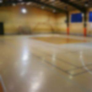 سالن ورزشی علم الهدا قم